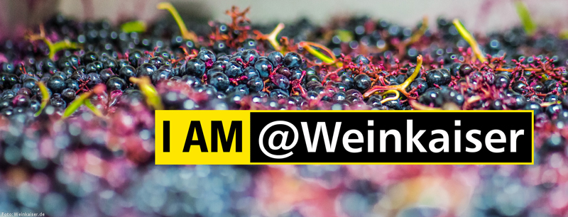 I am @Weinkaiser