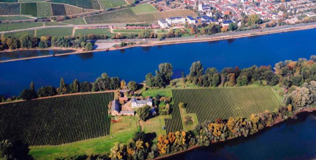 Schloss Reinhartshausens Rheininsel Mariannenaue